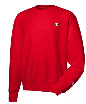 2. CHAMPION SWEATSHIRT